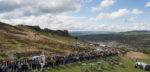 'Toekomst Tour de Yorkshire onzeker'