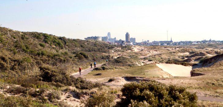 De Amsterdamse Waterleidingduinen en Zuid-Kennemerland: een oase van rust in de Randstad