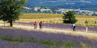 Fietstoerisme in de Vaucluse : Veel meer dan alleen de Mont-Ventoux